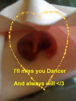 I wish you good travels, Dancer