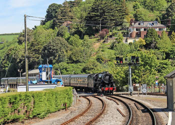 A nice surprise at Kingswear by Brit31