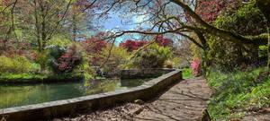 Spring in South Devon - 4
