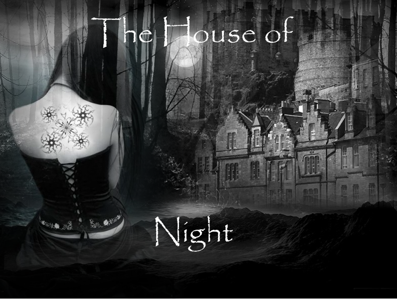 House of night series by xoxsmile80 on deviantart for Housse of night