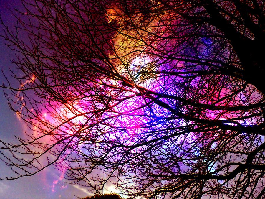 Rainbow tree by Skeypunch