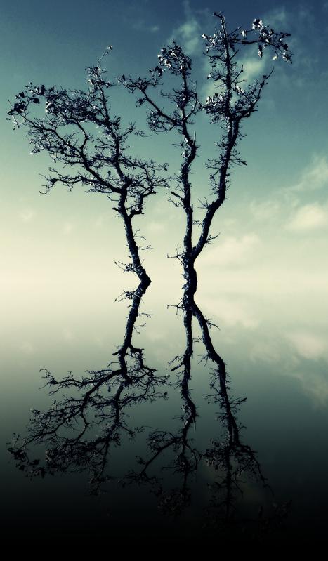 reflect by iris789