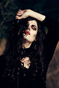 Bellatrix Lestrange III.