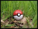 Wild Pokemon Caught