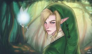 Navi and Link