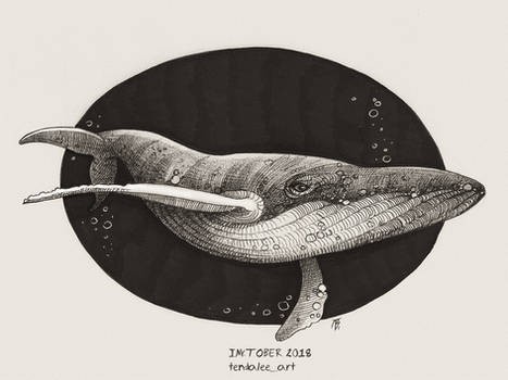 Whale by TendaLee