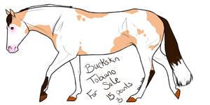 Buckskin sold