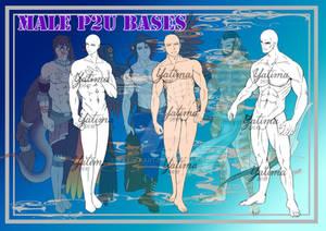 Male P2U Bases