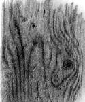 Charcoal wood surface