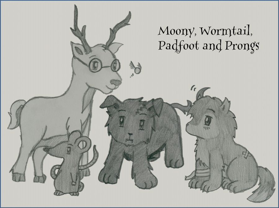 Moony, Wormtail, Padfoot and Prongs by GoldenPhoenix75 on ...
