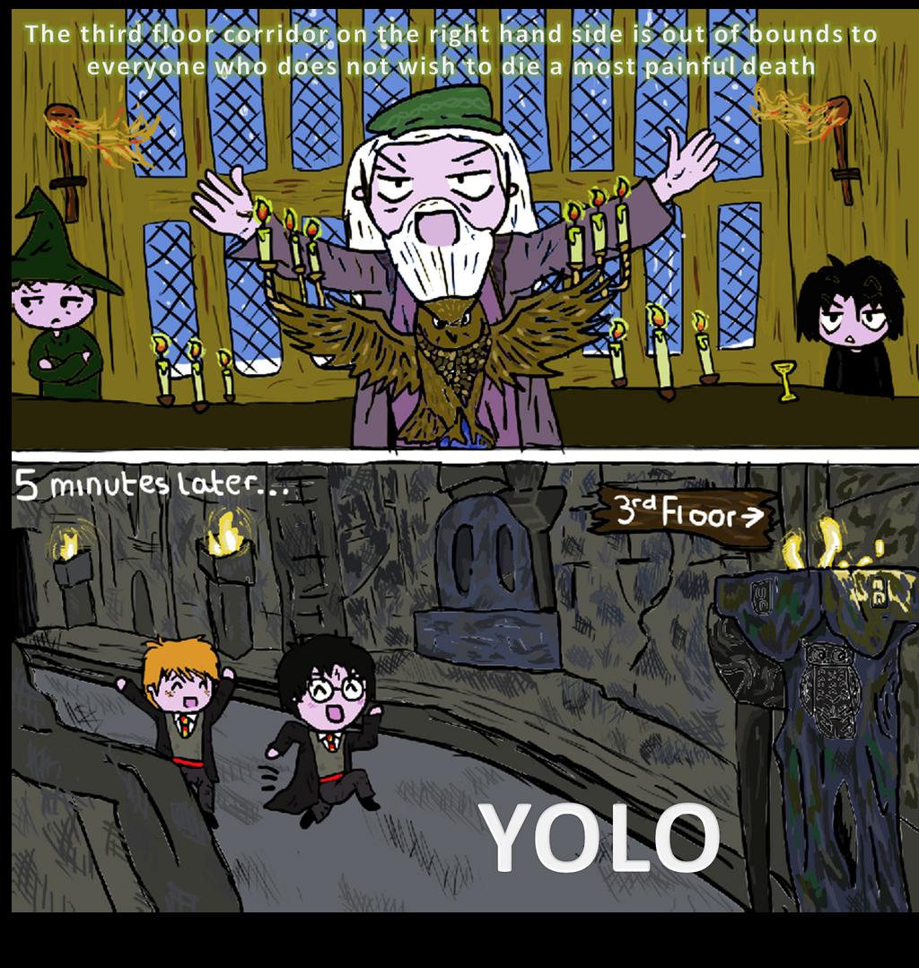 Harry Potter YOLO by GoldenPhoenix75