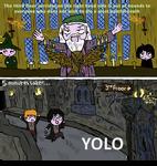 Harry Potter YOLO