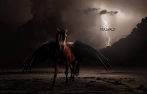 Viriarus 2010 by jar7431