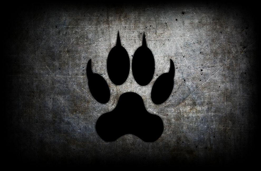The Furry Nation Symbol Of Pride By Luiske On Deviantart
