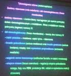 Anatomia 17-10-2012 part 9