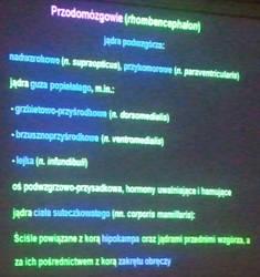 Anatomia 17-10-2012 part 19