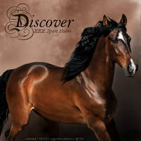 Discover by lexiekay2010