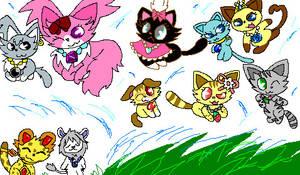 JEWELPET CATS