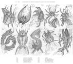 100 creatures parody - Part 5