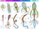 Exo-Evolution Part 1 - Pisciformes