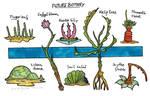 Future botany
