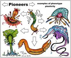Pioneers by MickMcDee