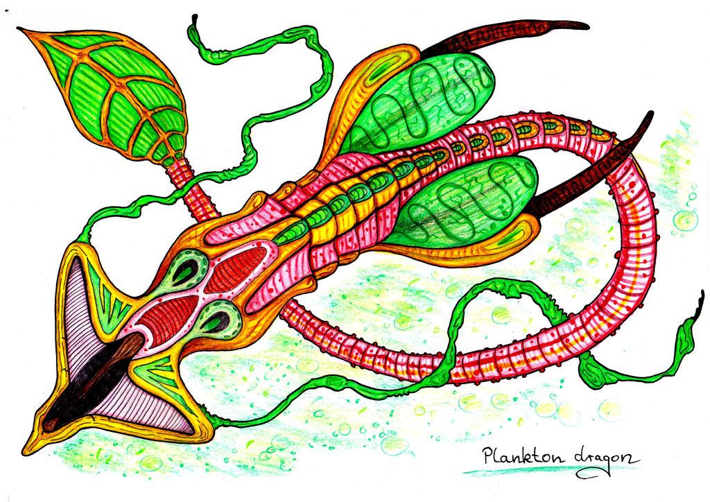 Plankton dragon