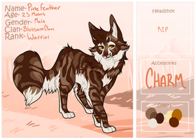 Pinefeather || BlossomClan Application by Vampy-Slayer