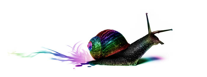the Speed of Color