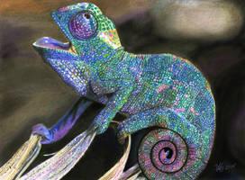 Baby chameleon by Katzenfrau007