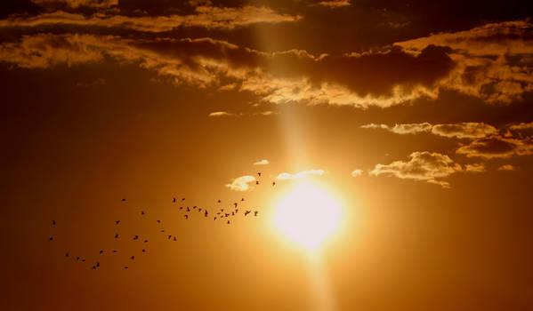 Sunset-1625073 1920