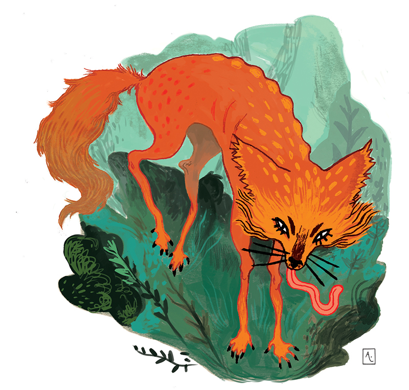 Teasing Fox by AnaCaspao