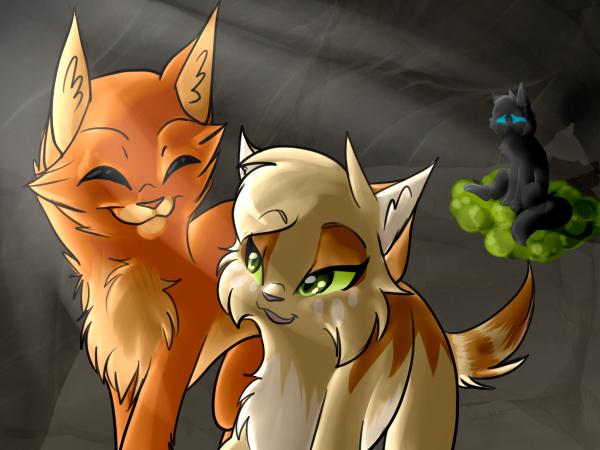 коты воители огнезвезд и песчаная буря картинки
