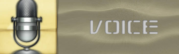 Software Voice