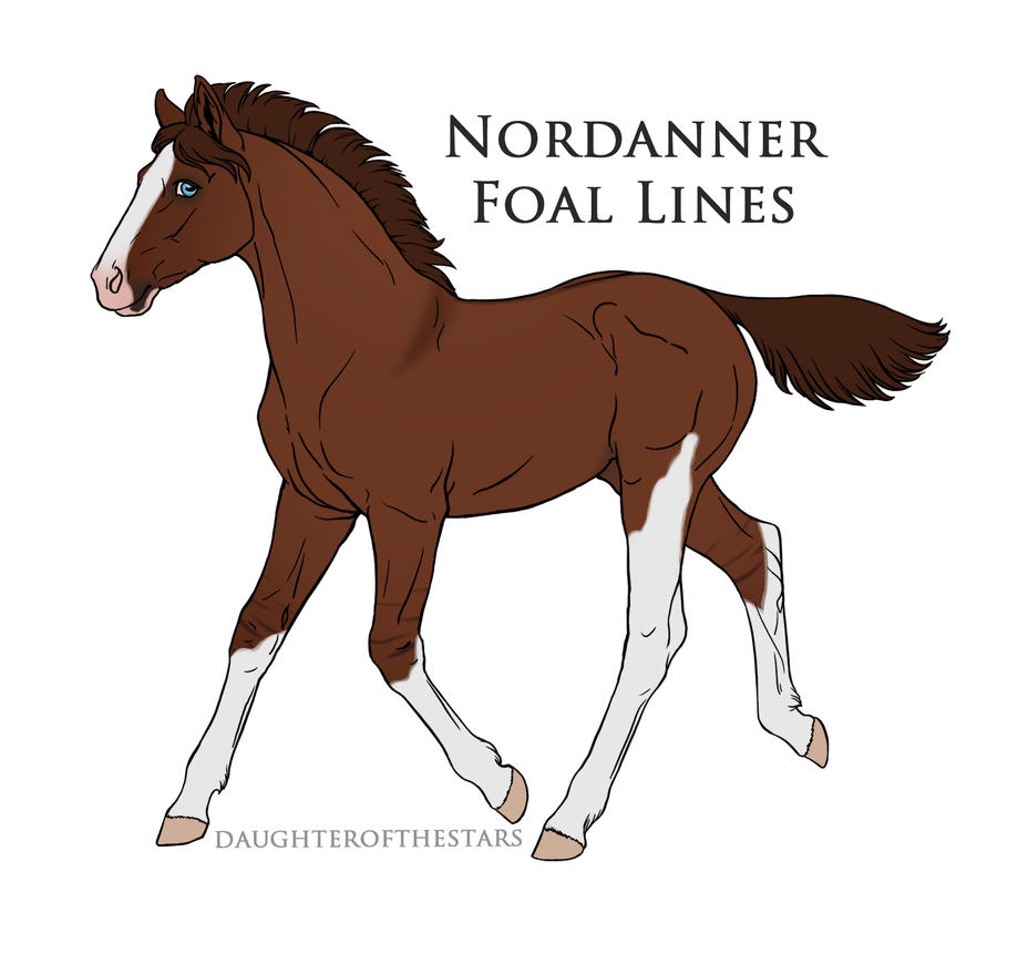 Nordanner Foal 5504 by Howlingreaches