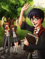 Farewell Harry Potter by adrybsk