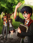 Farewell Harry Potter