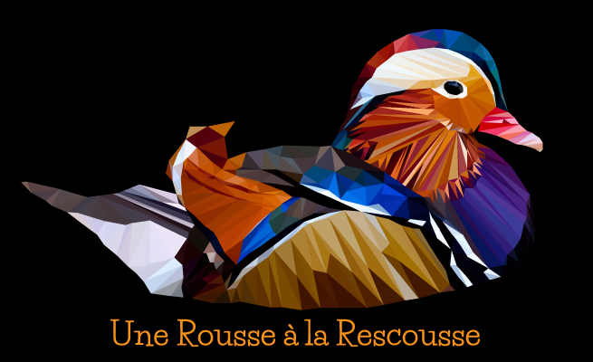 Mandarin duck low poly style by RousseRescousse