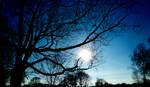 blueblueblue sky