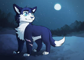 Snowy night by Owlsparky