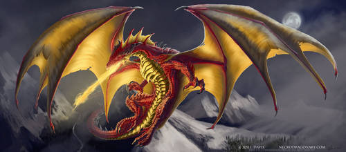 Commish. Red and Gold Dragon by drakhenliche