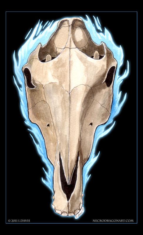 Horse Skull by drakhenliche