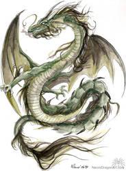Green Dragon by drakhenliche