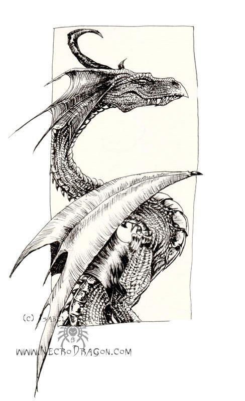 """Obrázek """"http://fc02.deviantart.com/fs12/i/2006/284/c/5/another_dragon_by_drakhenliche.jpg"""" nelze zobrazit, protože obsahuje chyby."""