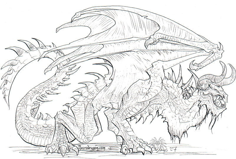 Dragon Lineart : More dragon lineart by drakhenliche on deviantart
