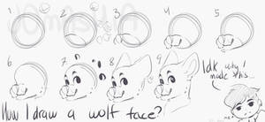 How I draw a wolf face?