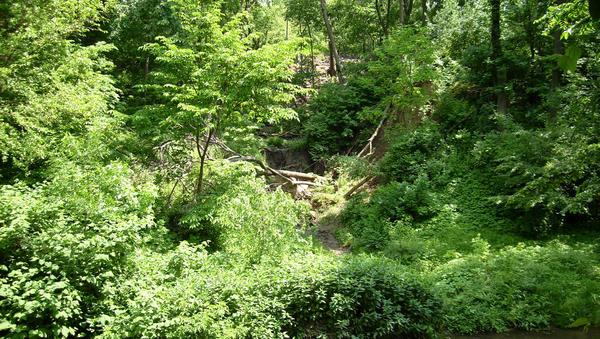 elmwood park hindu single men Palisades park: bergen county: a member of bergen county's growing indian american sikh community in garfield, elmwood park.