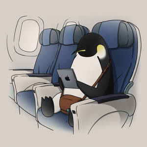 Emperor Penguin on an airplane!
