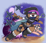 Cool Ninja