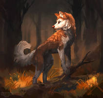 Woodland by Drelteo
